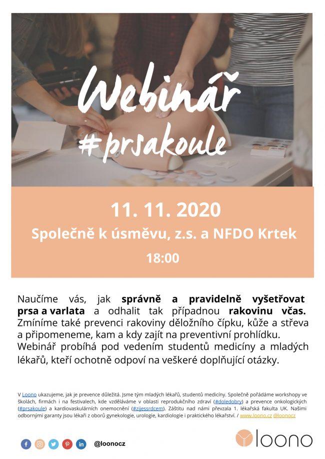 01_Webinář_prsakoule_